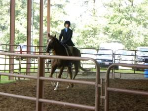 Horse show 006