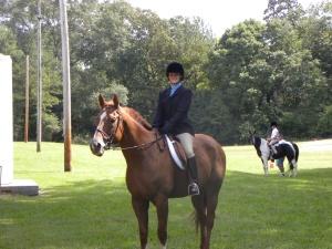 Horse show 009