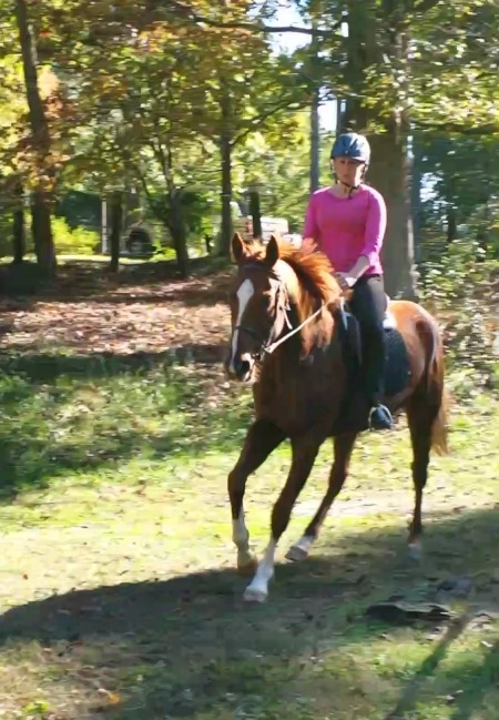 Lest you think Baron is being neglected, here's one of us cantering. I'm improving at the canter!